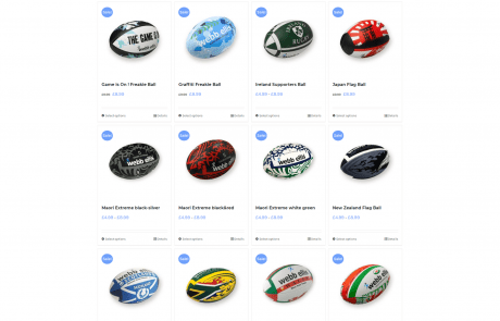 webb ellis rugby balls store