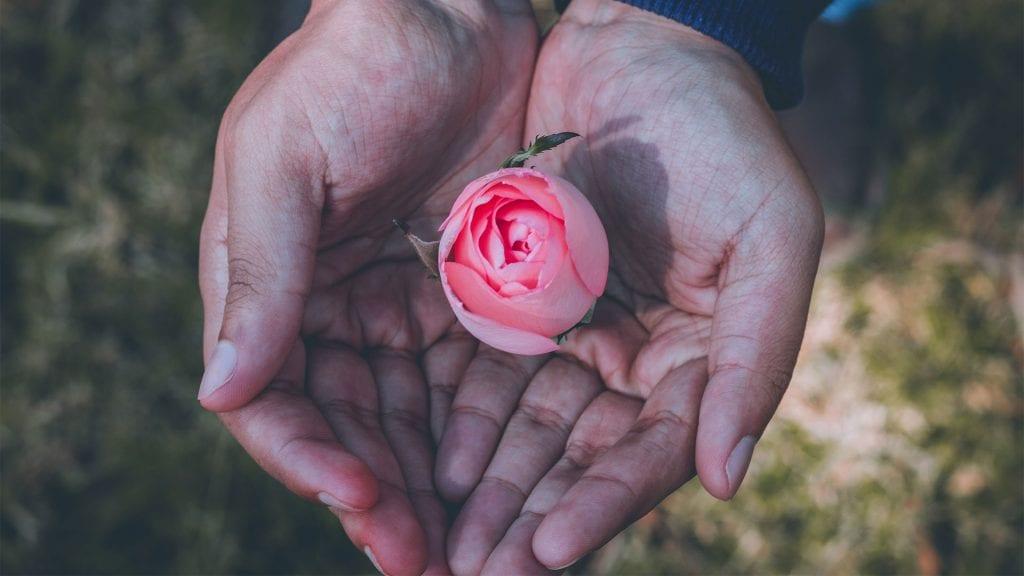 flower in hands, global