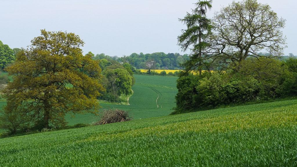 Rural Bedfordshire
