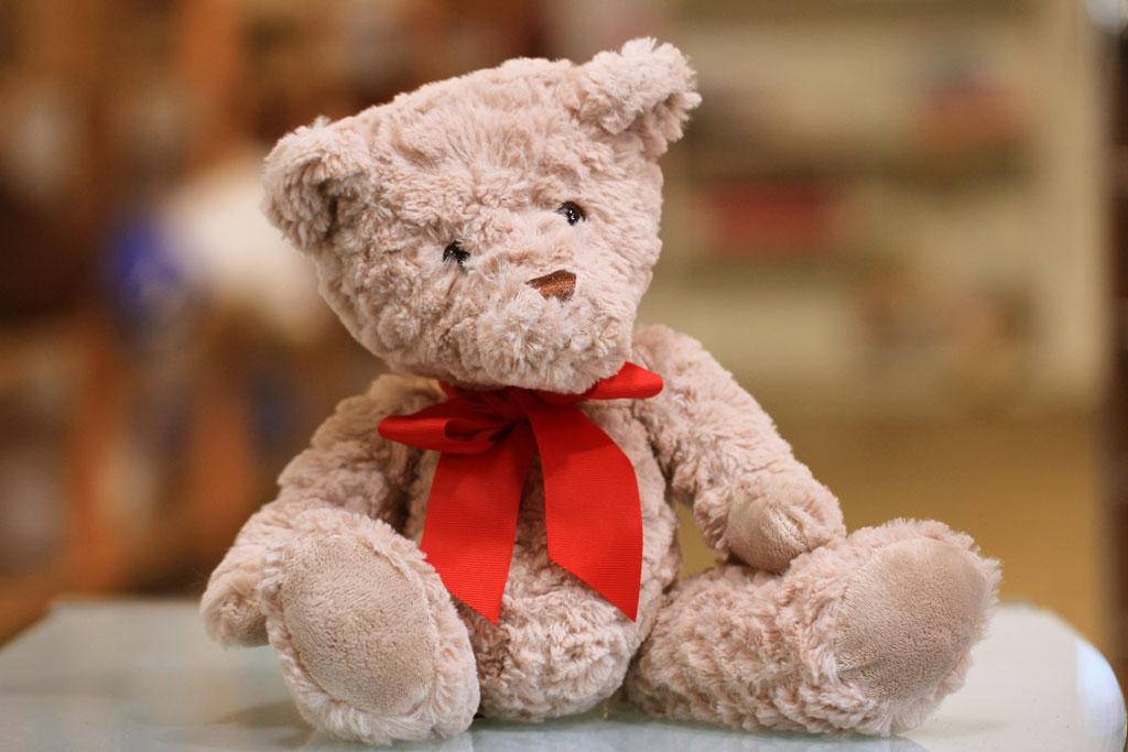 teddy bear, charity program